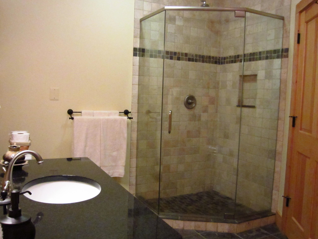 GuestBath_Shower